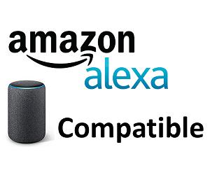 amazon alexa compatible 300x250